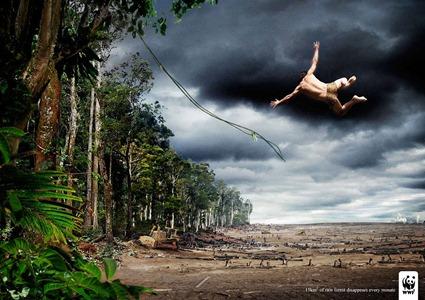 WWF - Tarzan